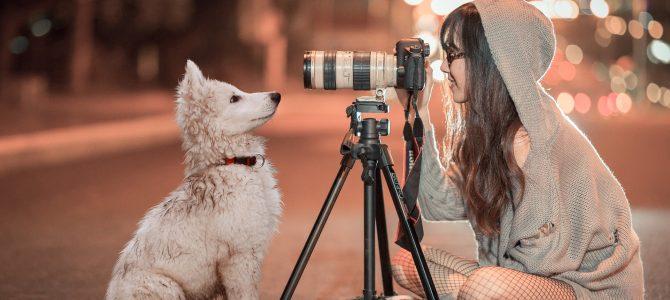 Le portrait en photographie ou comment une photographie peut plus que véhiculer une idée, changer la face du monde